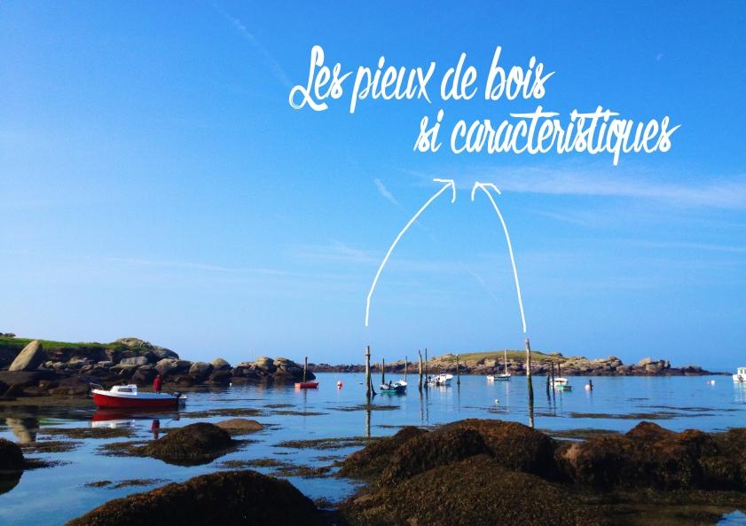 Port_de_Mazou_pieux_bois