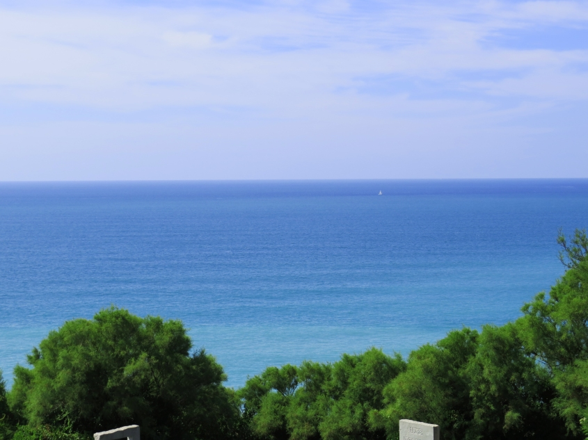ocean_Bidart