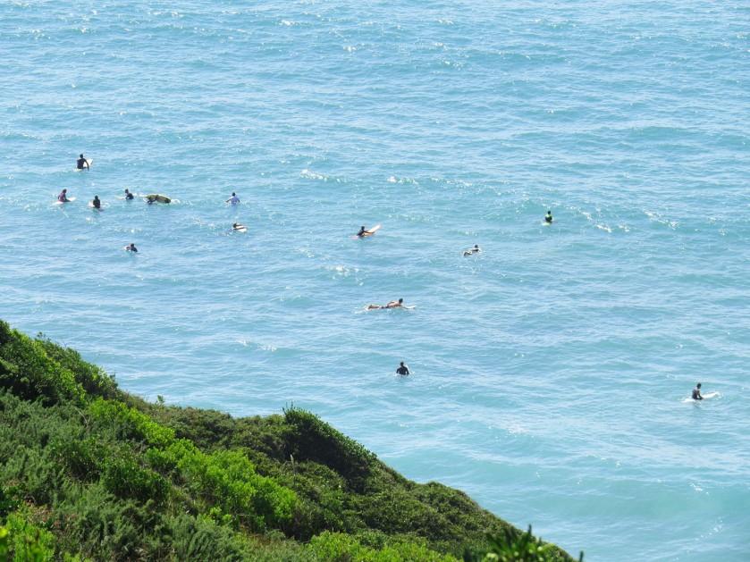 surfeur_bidart