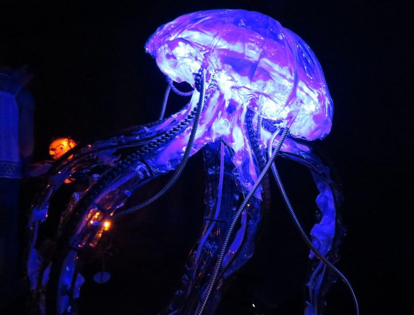 octopus_tomahawk_festival