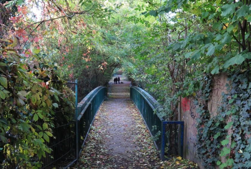 pont_prairies_saint_martin_rennes